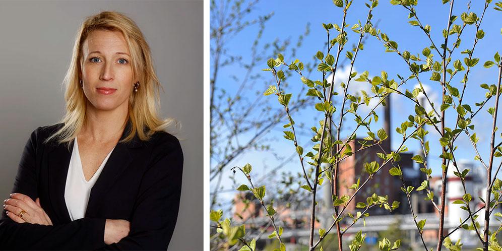 Grön teknik och ren energi ses som en av de viktigaste faktorerna för såväl det hållbara samhället som för näringslivet i regionen, konstaterar Susanne W Lindström.