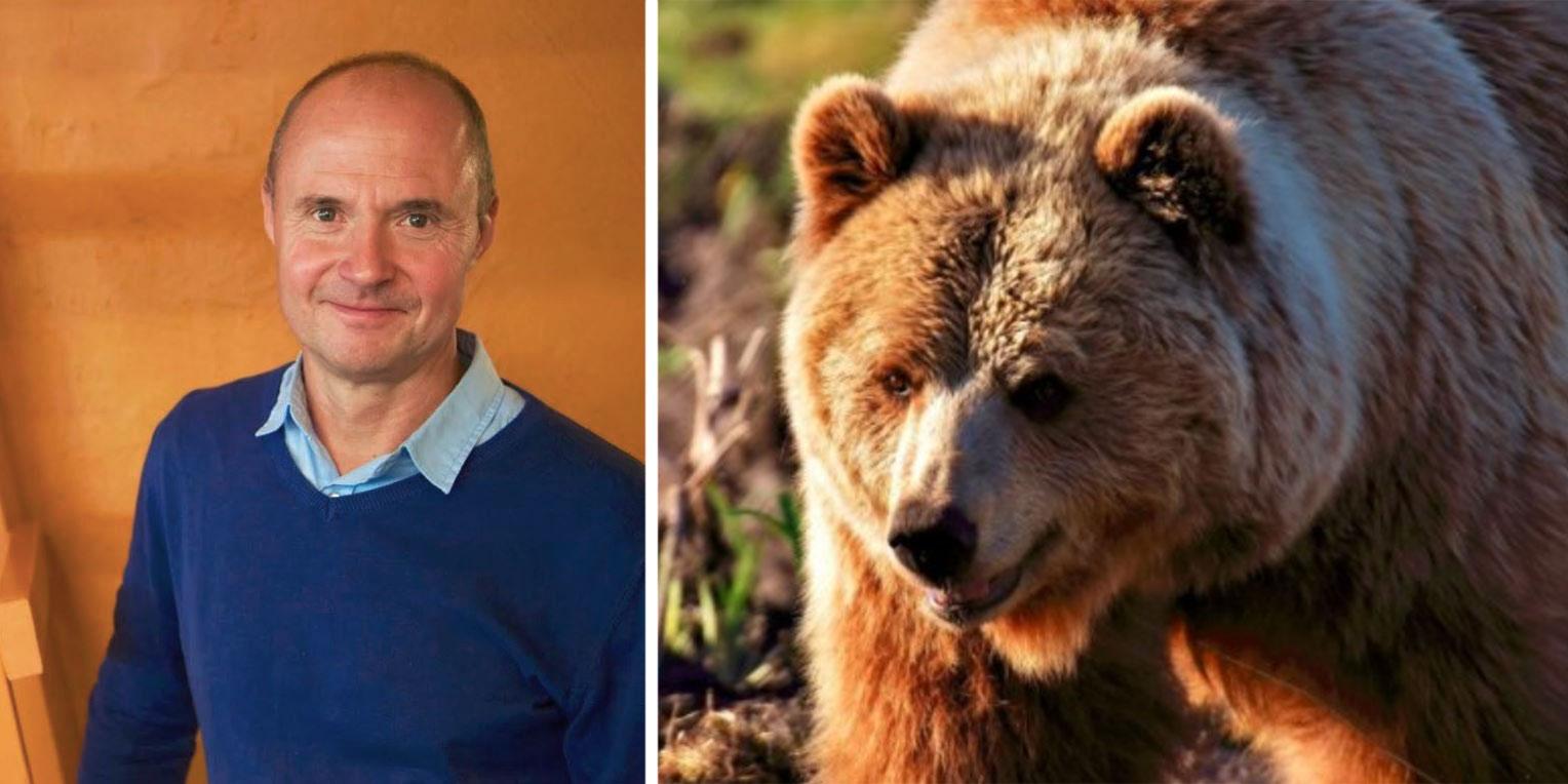 Erbjuder övernattning i Björnide. Christer Nederstedt, grundare av Hello Nature, vill att fler ska få uppleva vad naturen har att ge.
